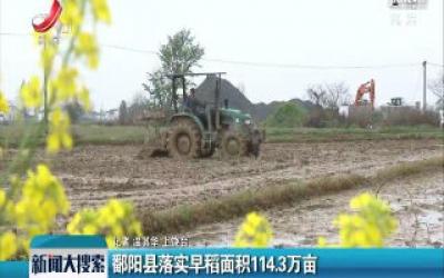 鄱阳县落实早稻面积114.3万亩