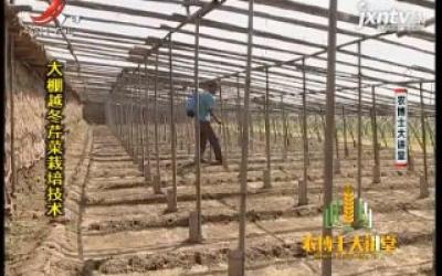 农博士大讲堂20200403 大棚越冬芹菜栽培技术