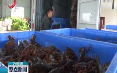 鄱阳县:小龙虾市场回暖 日交易量超过7万斤