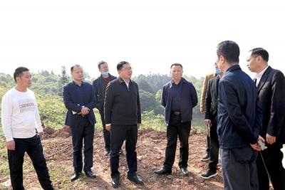 李锦林现场调度横板村河田安置小区提升改造工作