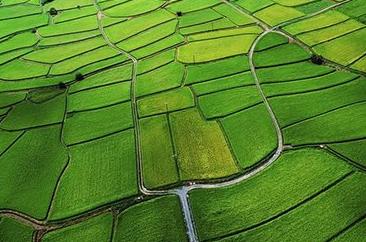 今年江西将建成2825万亩高标准农田