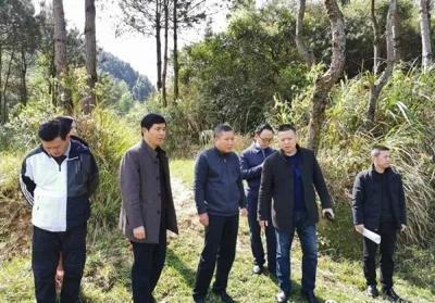 萍乡武功山风景名胜区总林长李水清到万龙山乡开展巡山工作