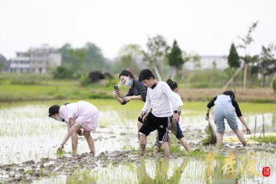 千年古镇李渡文化旅游周启动