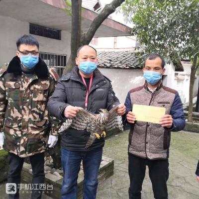 """""""三令齐下""""! 南昌市湾里区建构野生动物管控体系"""