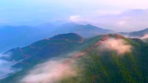 """【""""五一""""假期】江西:拥抱森林 文明旅游"""