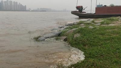 受降雨影响 赣江支流锦江水位明显上涨