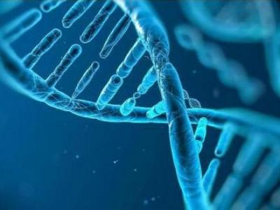 全自主中国人群基因研究成果发布:脸红不宜喝酒
