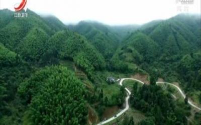 江西出台天然林保护修复制度实施方案