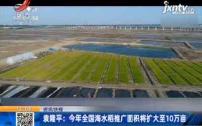 袁隆平:2020年全国海水稻推广面积将扩大至10万亩