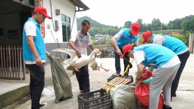 中铁四局修水县高标准农田项目部开展消费扶贫活动