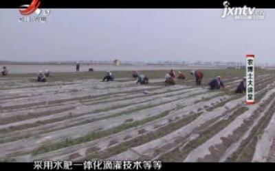 农博士大讲堂20200713 胡萝卜栽培管理技术