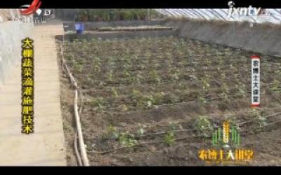 农博士大讲堂20200715 大棚蔬菜滴灌施肥技术