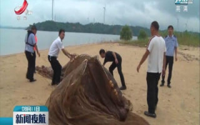 都昌:多部门联合 打击非法捕捞