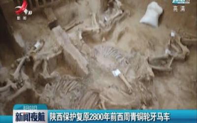 陕西保护复原2800年前西周青铜轮牙马车