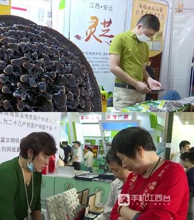 江西今年认定扶贫产品9198个 销售额超43亿元