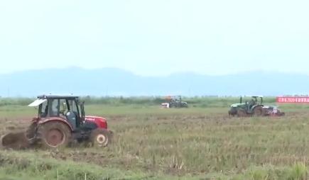 江西:推广栽培新技术 提高油菜种植效益