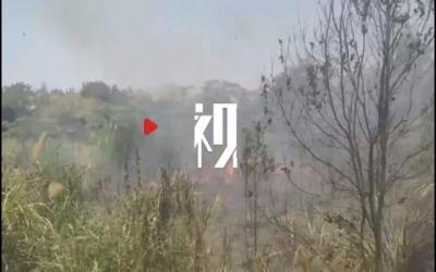 江西南昌:一天四起!草地、灌木林火灾近期频发