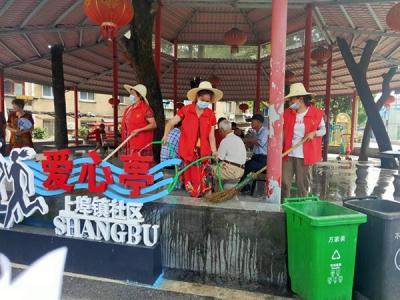 萍乡上埠镇:备战文明城市创建 党员先行