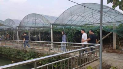 萍乡湘东区开展农业水价综合改革调研