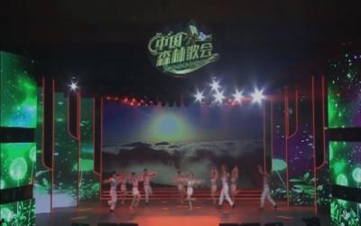 2020中国森林歌会总决赛