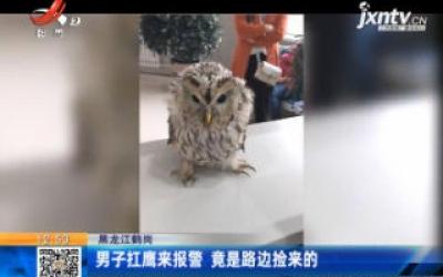 黑龙江鹤岗:男子扛鹰来报警 竟是路边捡来的