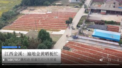 江西遂川:板鸭上餐桌 产业助民富