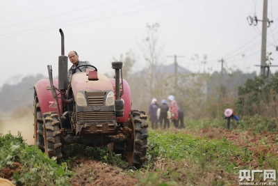 """江西庐山市:生态农业变沙山为""""金山"""""""