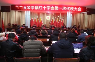 萍乡莲花县琴亭镇红十字会第一次会员代表大会胜利召开
