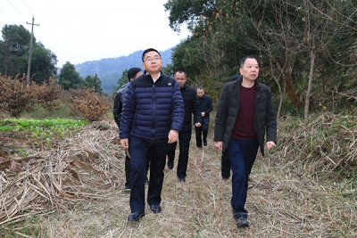 萍乡经开区党工委书记李锦林开展2020年区级总林长巡林工作