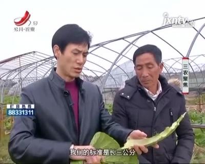 """三农聚焦20210115 """"临川小吃""""的产业发展"""