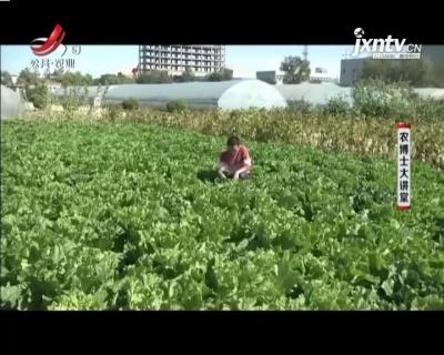 农博士大讲堂20210114 菜青虫的危害和防治的知识