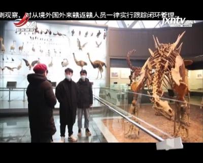 世界罕见 赣州发现7000万年前正孵蛋的窃蛋龙化石
