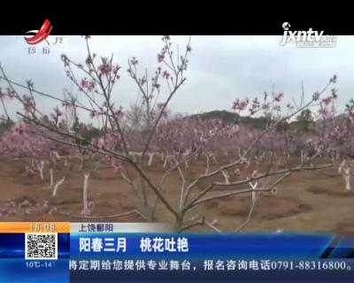 上饶鄱阳:阳春三月 桃花吐艳