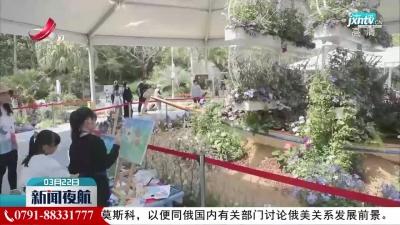 千余新优植物品种亮相粤港澳大湾区深圳花展