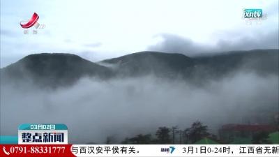 庐山现云海雨凇雾凇美景