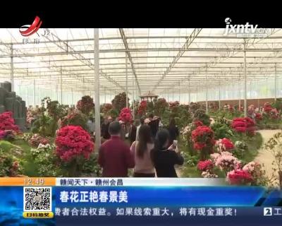 【赣闻天下】赣州会昌:春花正艳春景美
