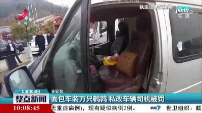吉安:面包车装万只鹌鹑 私改车辆司机被罚