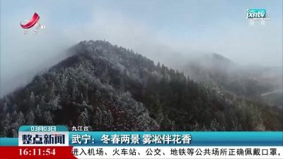 武宁:冬春两景 雾凇伴花香