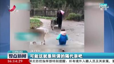 浙江:老人骑三轮5公里为重外孙女买气球