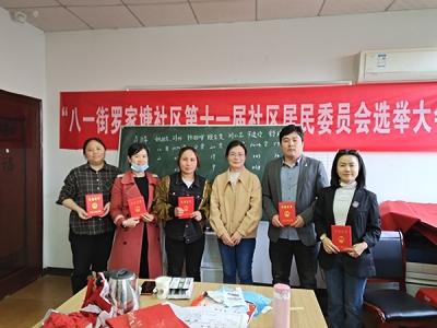 萍乡八一街圆满完成社区居民委员会换届选举工作