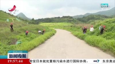 """江西: """"生态修复+"""" 废旧矿区成宝地"""
