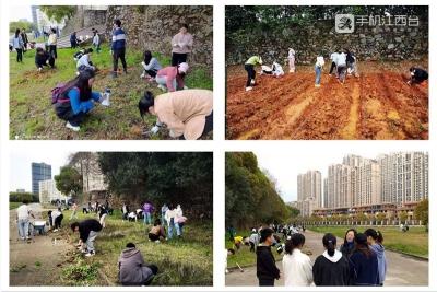学史力行 江西一高校党员师生打造特色植物园
