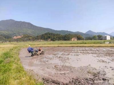 鹰潭市龙虎山景区上清镇扎实筹备 做好春耕备耕工作