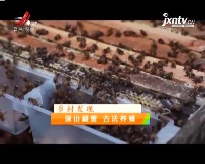 稻花香里20210415乡村发现——深山藏蜜 古法养蜂