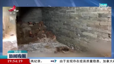 西安一西汉墓发现2000年前粮食