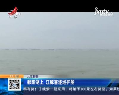 九江都昌:鄱阳湖上 江豚喜逐巡护船