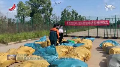 南昌昌北机场海关集中销毁一批侵权商品