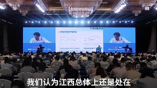 王昌林:江西要緊抓區位優勢形成發展支點