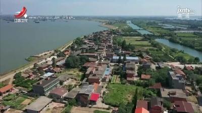 南昌:江豚频现扬子洲水域 水环境治理见成效