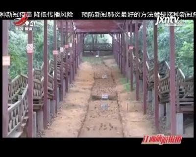 江西旅游报道20210913